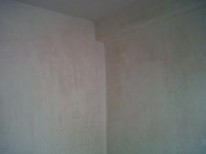 IMG01308-20120509-1710