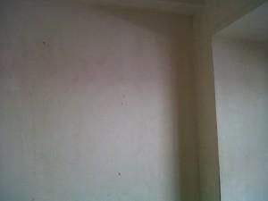 IMG01309-20120509-1710
