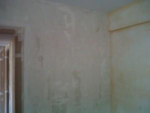 IMG01475-20120614-1632