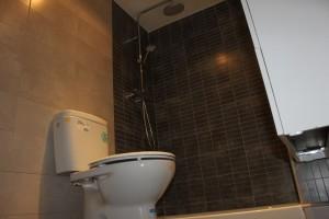 proceso de reforma baño