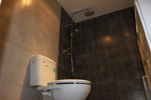 reformado baño ducha